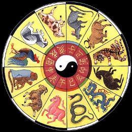 Scopri il tuo segno cinese